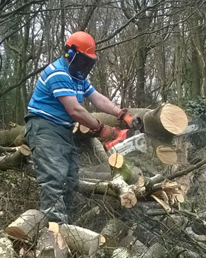 Mark-Cutting-Logs-With-Saw-300x376px